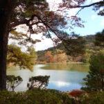 令和2年11月29日(日)「秋の修法ヶ原ハイキング」を開催しました!